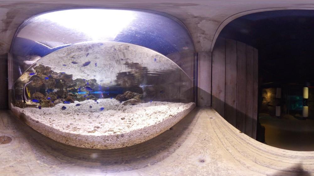 Εικονική πλοήγηση στο Sea Life Aquarium στο Λονδίνο