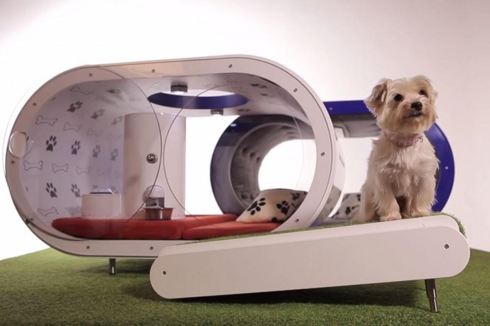 Ονειρικό σπίτι σκύλων από την Samsung