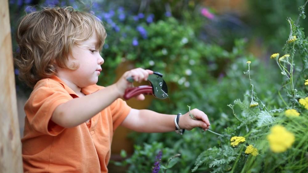 Μάθετε τα πάντα 'Περί Κήπου' στο διαδίκτυο