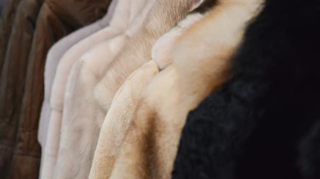 Ο κόσμος της γούνας από την Dolce Vita Furs
